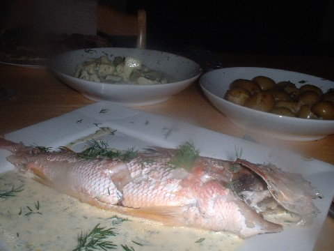snapper meal