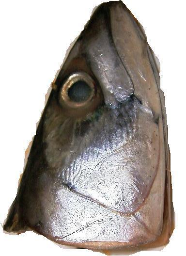 fish head