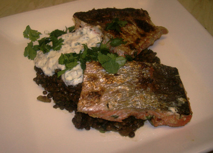 salmon, puy lentils, yoghurt